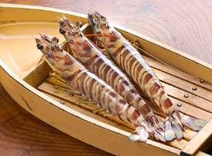 Raw tiger prawns